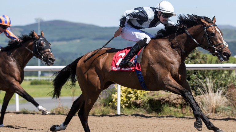 Dilmun: Joseph O'Brien's filly got off the mark at the third time of asking at Dundalk last time