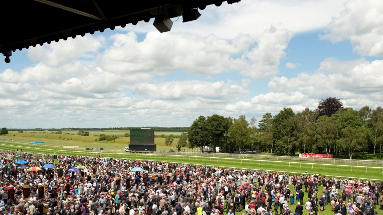 The three-day July festival takes place at Newmarket this week
