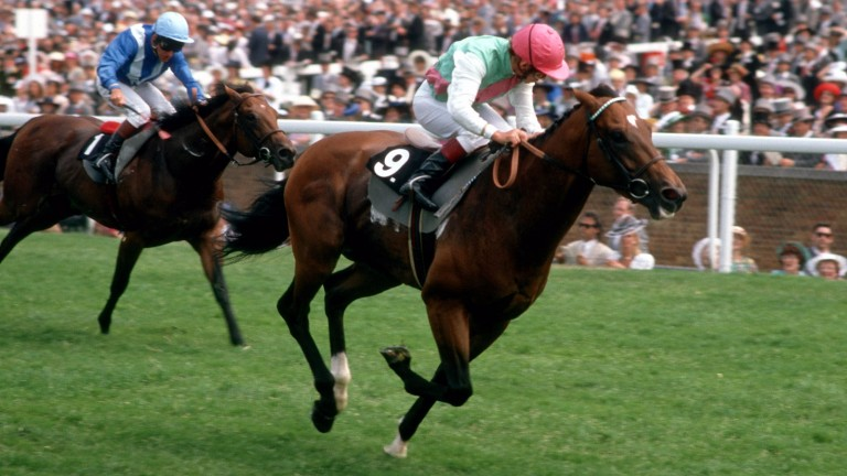 Danehill flies to a course-record success under Willie Carson in the 1989 Cork and Orrery