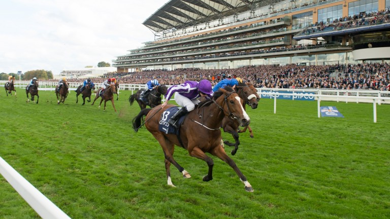 Powering home in the QEII Stakes at Ascot last October