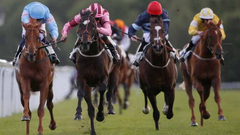 Laidback Romeo wins at Windsor, the second of his five successes