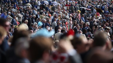 Crowds for Saturday's racing could top Super Saturday earlier in the month