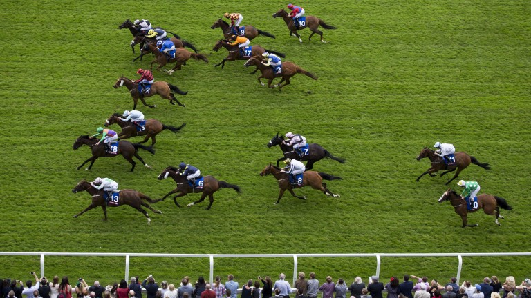 Royal Birth and Aaron Jones (18), beats Robot Boy (nearside) and Lexington Abbey (light blue) in last year's totescoop6 Heritage Handicap at Ascot.