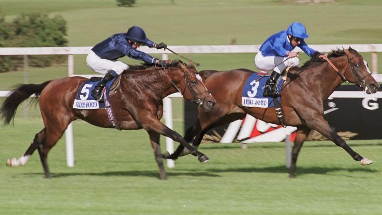 Fantastic Light (leading) denies Galileo in a thrilling Irish Champion Stakes