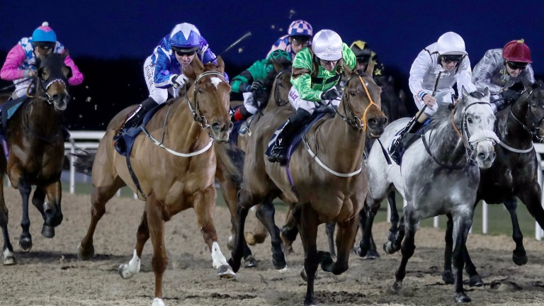 Flaming Spear and Robert Winston (left, blue with white star on cap) sprint from last to first to land an improbable victory at Newcastle in January