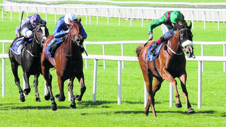 The Aga Khan's Eziyra (Pat Smullen) head for victory at the Curragh last September