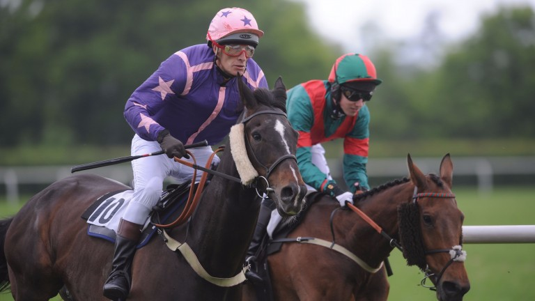 James McNeile and Qianshan Leader (nearside) at Kingston Blount