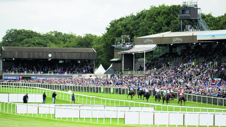 Newmarket: one of four meetings on Friday night