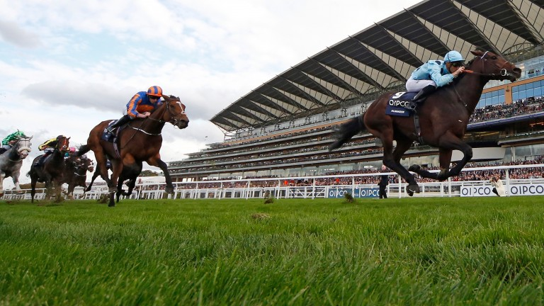 Almanzor wins the 2016 Qipco Champion Stakes, centrepiece of a stunning card at Ascot