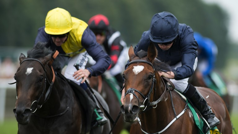 Nebo (left) runs in the Qatar Richmond Stakes