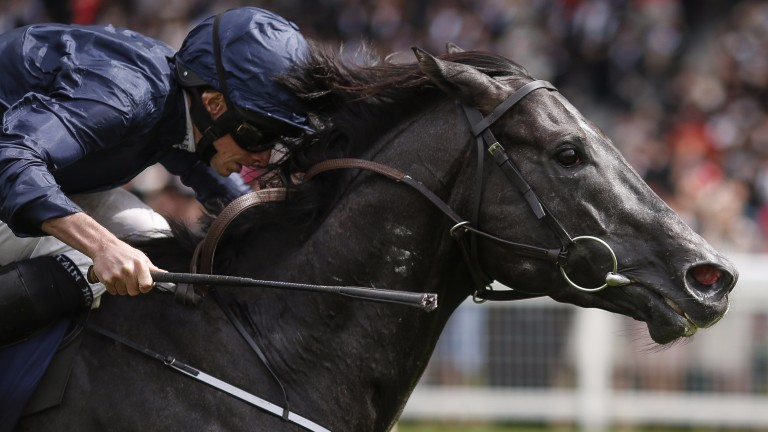 Caravaggio: has international options following July Cup defeat