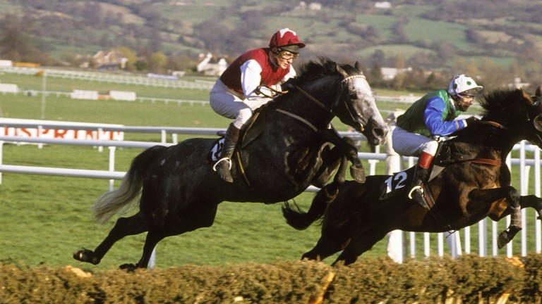 A different discipline but the same colours as Kribensis and Richard Dunwoody head for victory in the 1990 Champion Hurdle