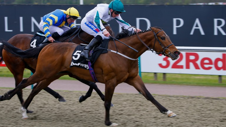 Kimberella beats Gracious Johnin the Betway All-Weather Sprint Championships at Lingfield in April
