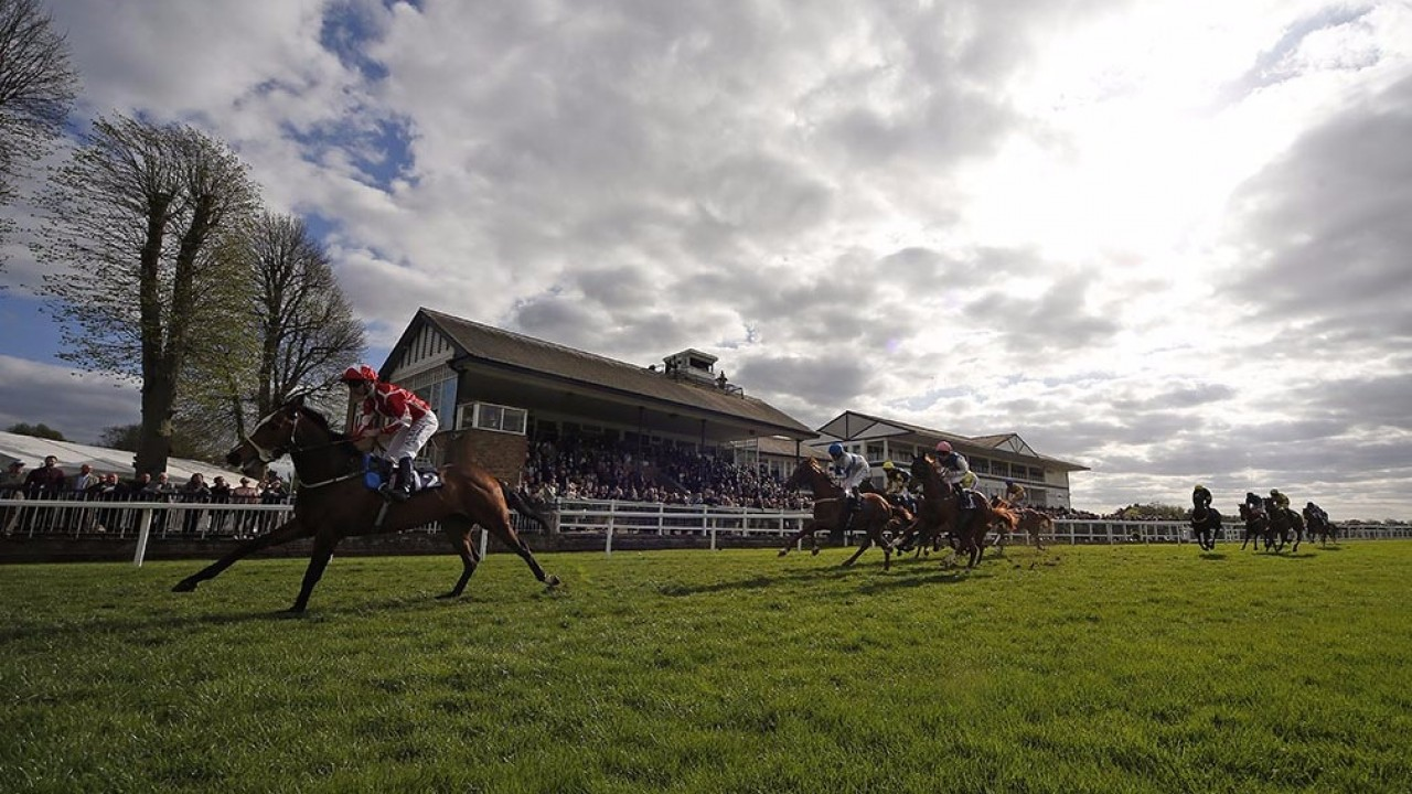 Monday's free racing tips: punting pearls from our super team