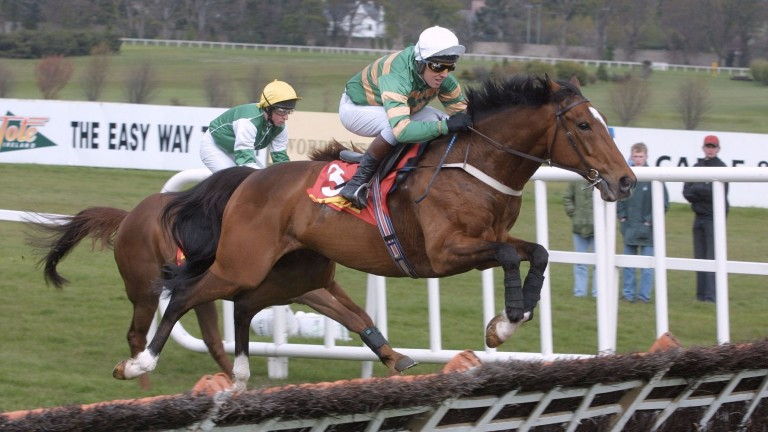 Charlie Swan: pictured here winning on Istabraq at Leopardstown in 2001, rode his first winner at Naas in 1983