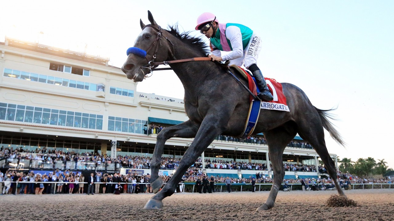 Arrogate, world's top-ranked horse, suffers shock defeat