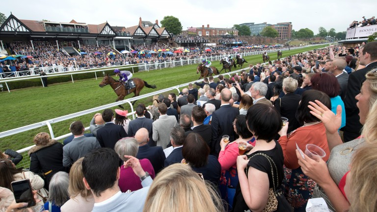 Racing began on the Roodee at Chester in 1539 and is still going strong today