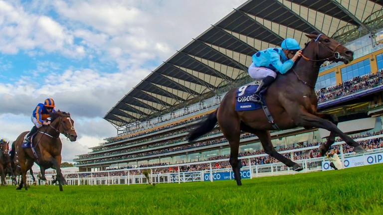 Almanzor: winning the Champions Stakes at Ascot last October