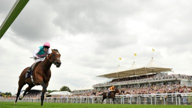 The duel that never was: Frankel powers to victory as an injured Canford Cliffs tolis on the far rail.