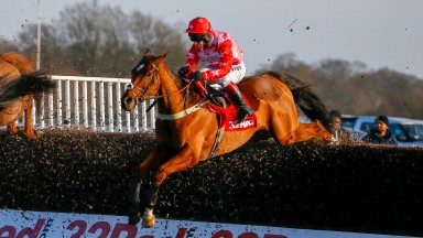 Poker School: has been given a break by Ian Williams so he is fresh for the Summer Plate