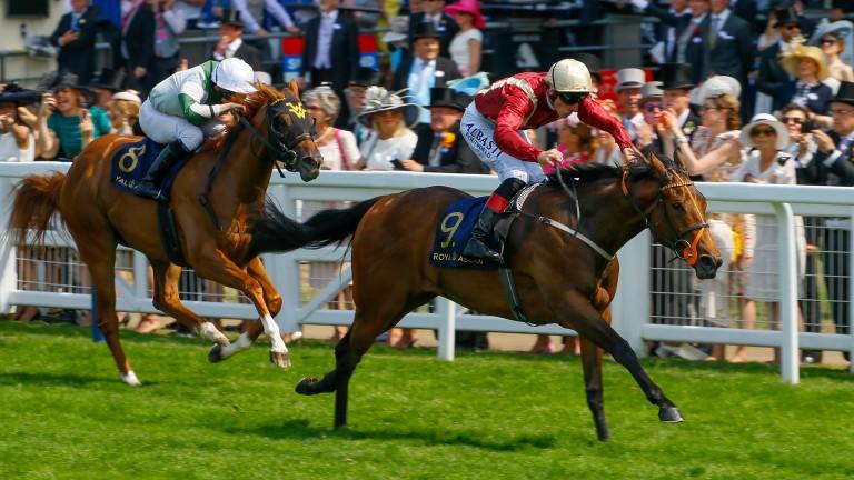 Heartache: winning the Queen Mary at Royal Ascot under Adam Kirby
