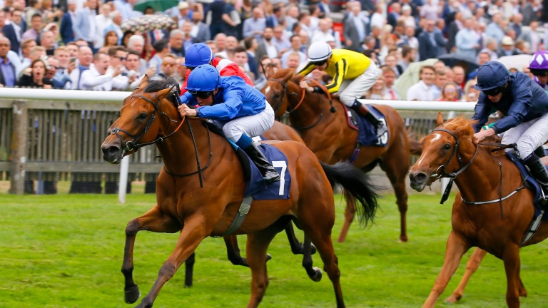 Roulette (yellow colours) finishes a close sixth to Poetic Charm on her debut
