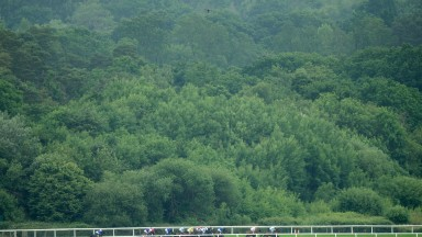 The drone flies over the head of the runners in the Wolferton at Swinley BottomRoyal Ascot 20.6.15 Pic: Edward Whitaker