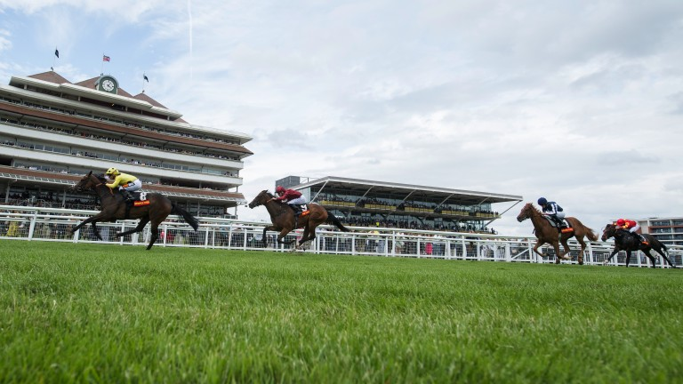 Racing takes place this evening at Newbury
