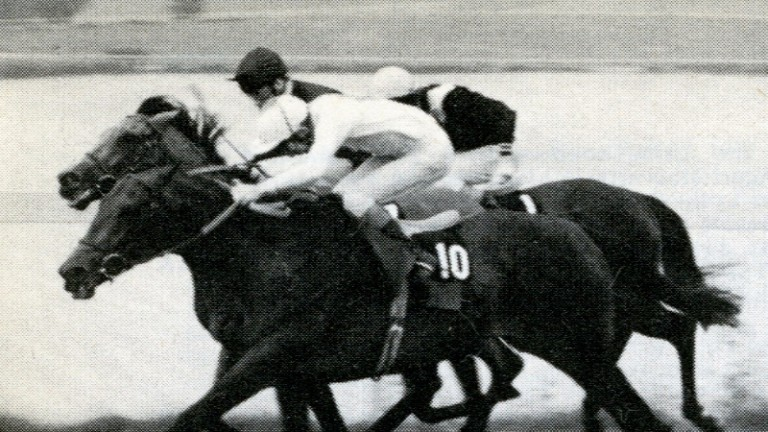 To-Agori-Mou (near) and Kings Lake (middle) duel for the lead in the 1981 Sussex Stakes