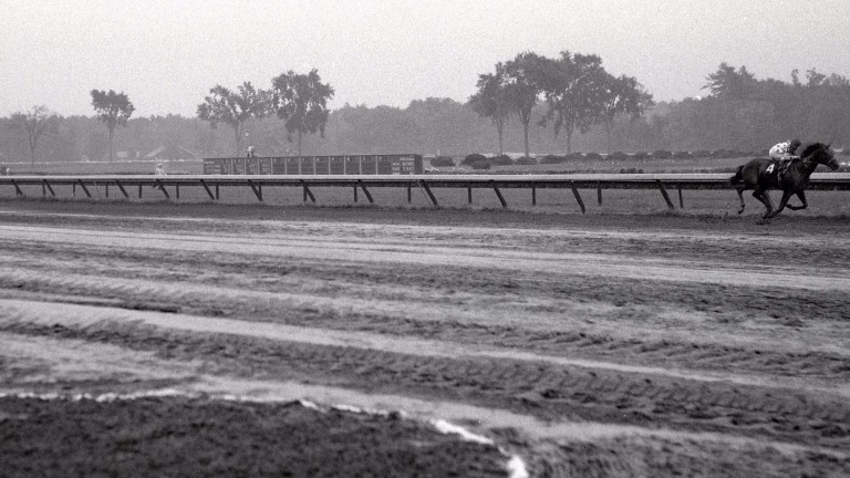 Damascus winning the 1967 Travers by 22 lengths