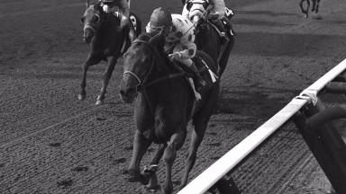 Damascus winning at Saratoga