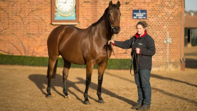 Ever Rigg: the dam of God Given died recently, so a black-type success for her daughter was most welcome