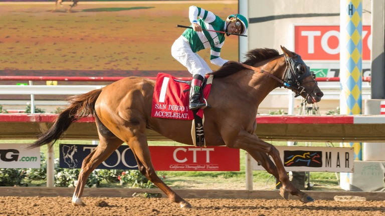 Shock result: Accelerate and Victor Espinoza hit the wire in the San Diego Handicap at Del Mar, where they were more than 15 lengths ahead of Arrogate