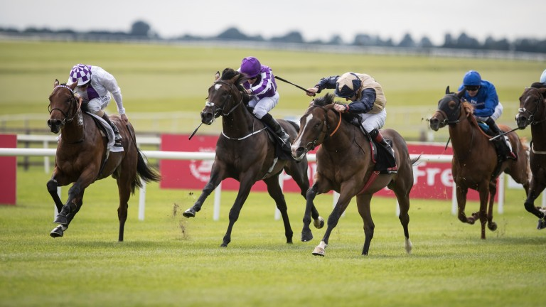 Beckford (gold star on cap): the grandson of Dansili scores in the Group 2 Railway Stakes at the Curragh