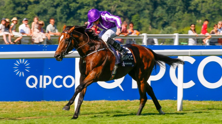 Highland Reel was the star of the show at Ascot last year on King George day