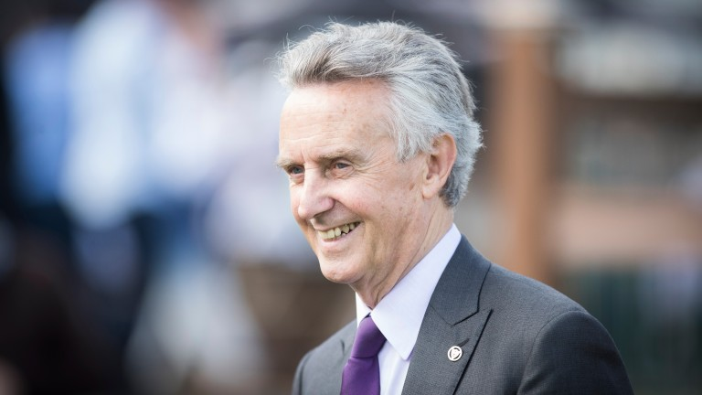 Jim Bolger: has a genuine Classic contender in Verbal Dexterity