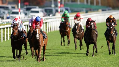 DONCASTER, ENGLAND - NOVEMBER 07:  Jockey's Pat Cosgrove riding Sainted and John Egan riding Udontdodou lead the field in the Betfred Mobile Cock O'The North EBF Maiden Stakes on November 7, 2015 in Doncaster, England.  (Photo by Daniel Smith/Getty Images