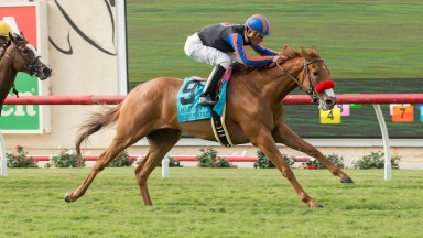 Former Joe Tuite-trained Madame Dancealot (Jamie Theoriot) storms to a surprise victory in the Grade 2 San Clemente at Del Mar on Saturday