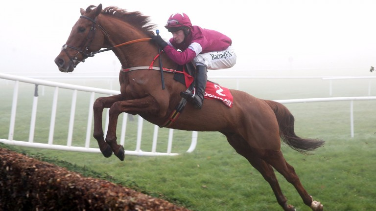 Balko Des Flos: jumps out from the Galway Plate entries