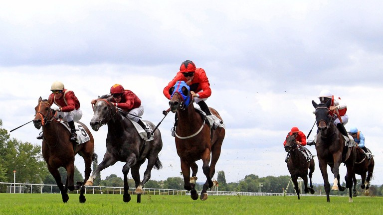 Connections of fourth-placed High Dream Milena (right, white sleeves) are to appeal against the decision to leave the placings unaltered in Sunday's Prix Robert Papin, won by Unfortunately (third left)