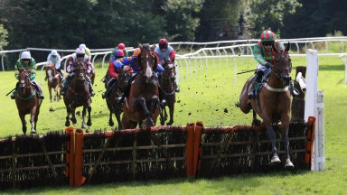 Cougar's Gold leads the field en route to winning the 2m6f handicap hurdle