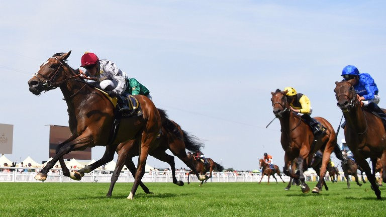 Qemah earns a second Royal Ascot success as Usherette (blue silks) belatedly sees daylight in the Duke of Cambridge Stakes