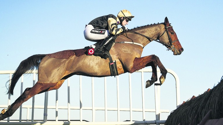 Shaneshill: is back over fences at Killarney