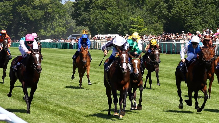 Senga (white cap, centre of picture) could renew rivalry with Shutter Speed (pink cap) in Saturday's Shadwell Prix de la Nonette