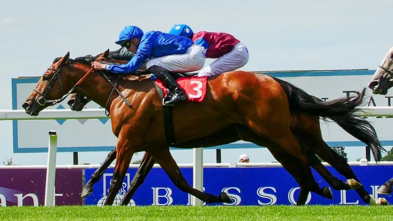 Kidmenever: should be suited by stepping up to Ebor trip