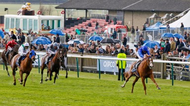 Classified stakes runner-up Glory Awaits (blue blinkers) chases home Dawn Approach in the 2013 2000 Guineas