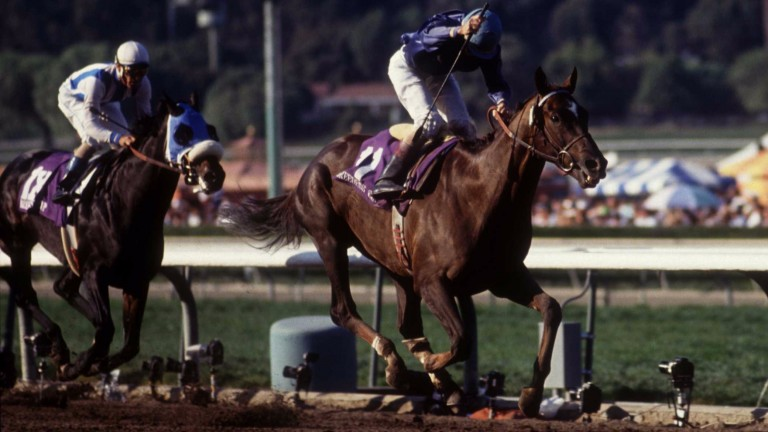 Breeders' Cup stunner: the 133-1 chance Arcangues (Jerry Bailey) beats Bertrando to become the longest-priced winner in the event's history in 1993