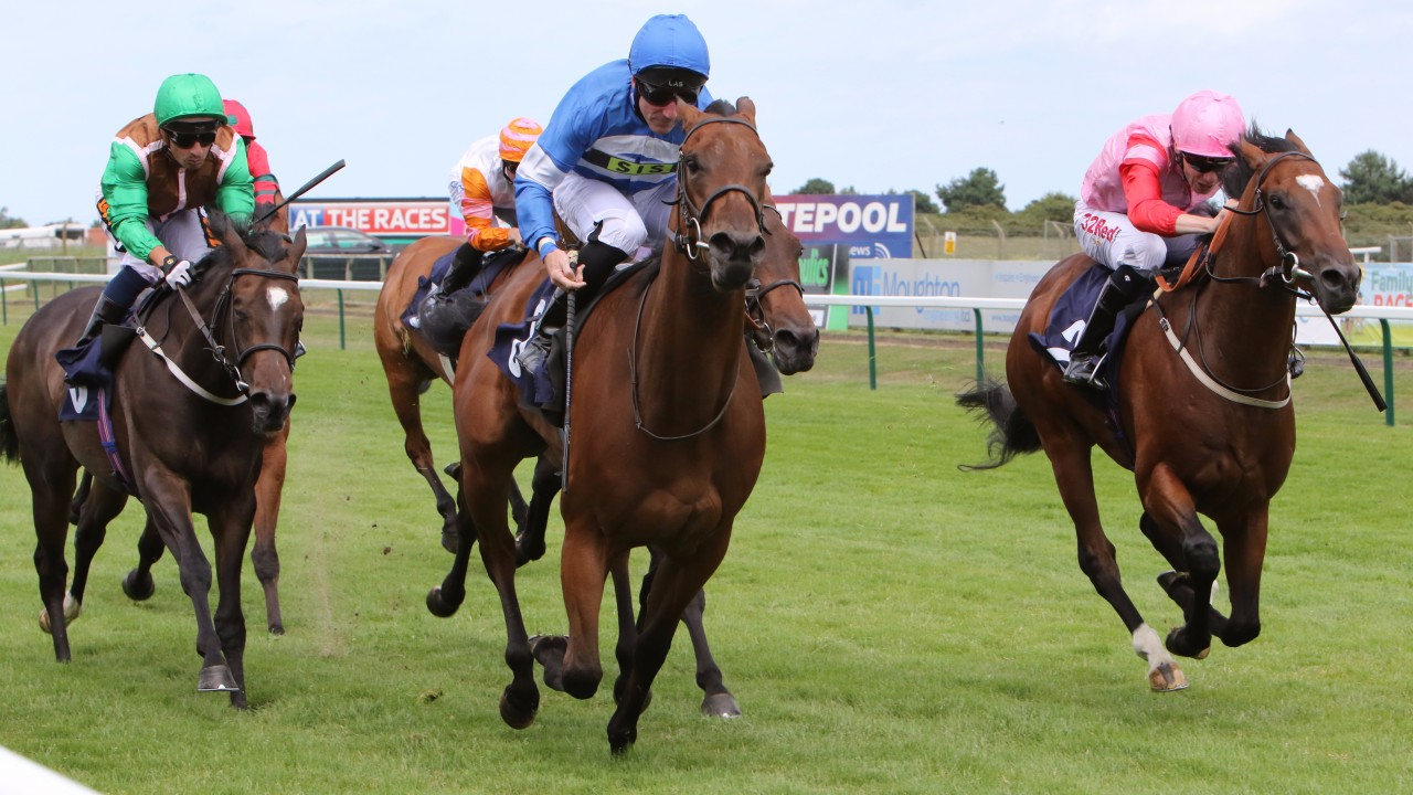 3YO 'accidentally' runs in 2YO race at Yarmouth, wins accordingly