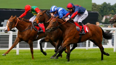 Tajaanus Jim Crowley (centre) wins from Capomento (near side) and stablemate Billesdon Brook