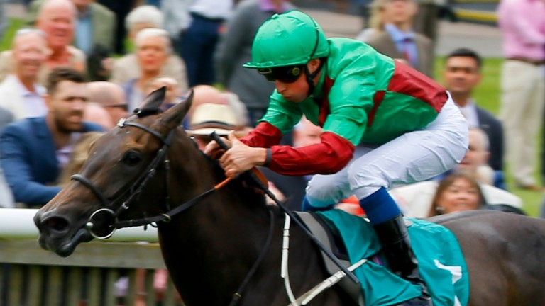 Nyaleti: runs in the Rockfel Stakes